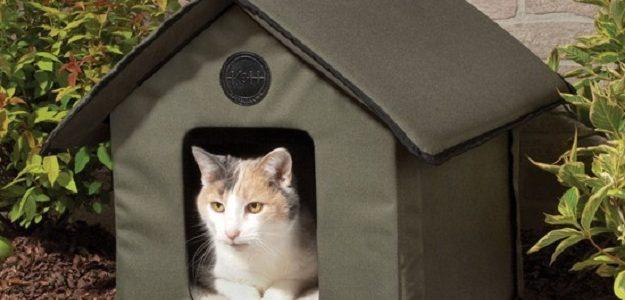 DIY บ้านน้องแมว สำหรับทาสแมว